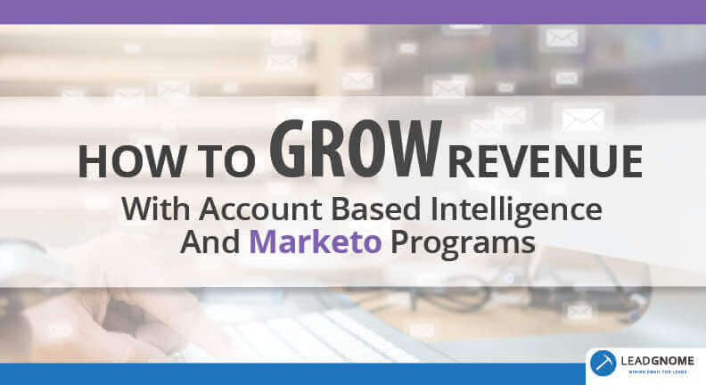 How To Grow Revenue With Account Based Intelligence And Marketo Programs